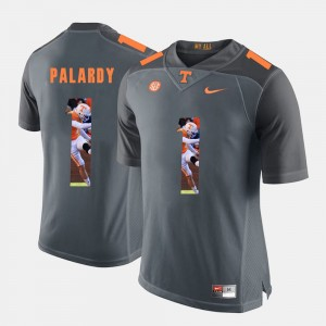 Men Vols Pictorial Fashion #1 Michael Palardy college Jersey - Grey
